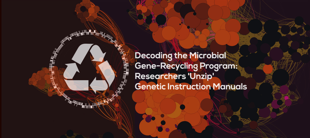 Decoding the Microbial Gene-Recycling Program: Researchers 'Unzip' Genetic Instruction Manuals